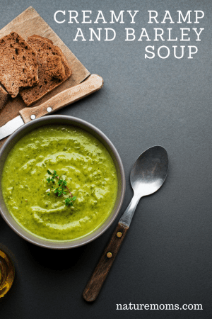 Ramp Barley Soup