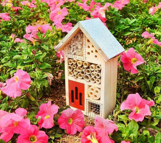 Bug Hotel for Pollinators