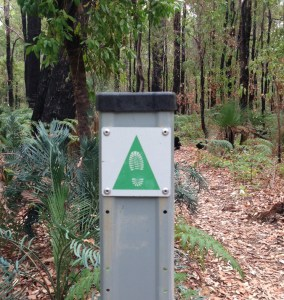 bushwalking perth