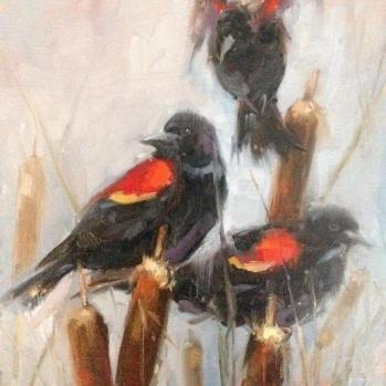 Red-wings on Cattails by Susan M. Rose
