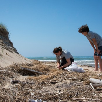 Volunteers remove trash from the beach at Flower Creek Dunes Nature Preserve
