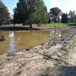 One of 6 wetlands that U.S. Fish & Wildlife Service helped create this year.