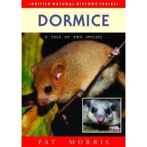 Dormice, by Pat Morris