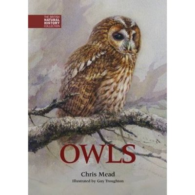 ' Owls' by Chris Mead