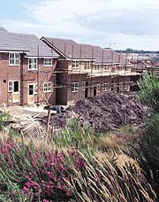 Building on a heathland