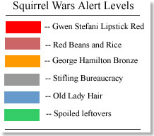 Squirrel alerts