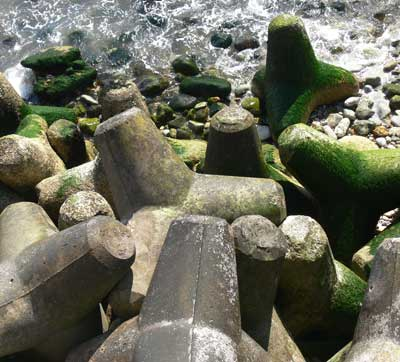 Tetrapods, Bonchurch