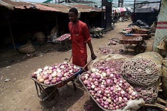 Breaking: Northern Onion marketers to stop exportation to the south