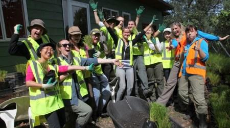 ニュージーランドで自然保護ボランティアに参加しよう!