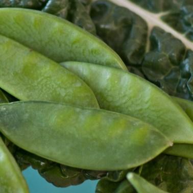 05_Green-spinach,-peas