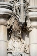 Prime nesting spots.