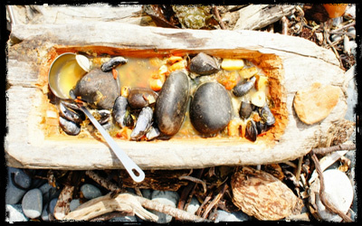 mussels in driftwood