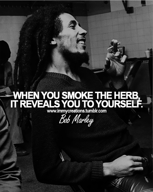 Top Celebrity Marijuana Quotes 420