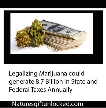 Could Marijuana Create More Employment Opportunities