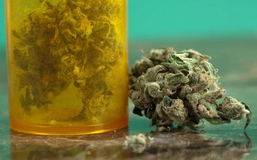 Top 10 Lies About Marijuana