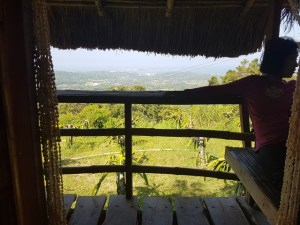 Natures Healing home Philippines Nipa hut 4 (2)