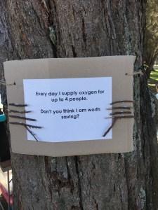 treeposter