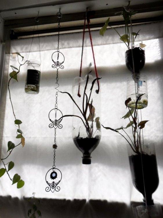 Beautiful & Functional- Create Plant Chamber