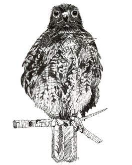 Kundalini hawk