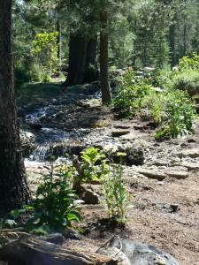 stream bed landscape design in Central Oregon by Natures Path