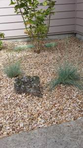 Xeriscape-Bend-Oregon