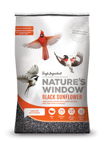 Image of Nature's Window Black Sunflower - Front View