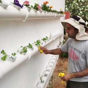 לימוד חקלאות מתקדמת בבית ספר ממלכתי דתי