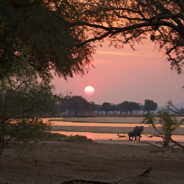 Mana Pools National Park (1)