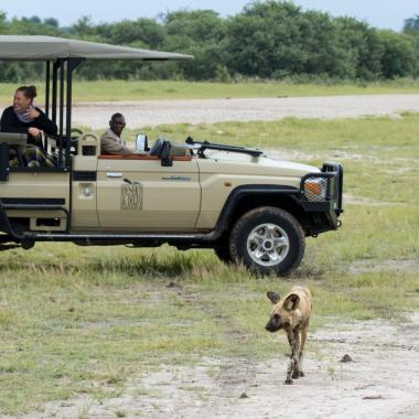Savute game drive