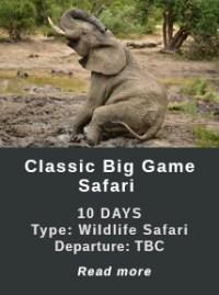 Classic-Big-Game