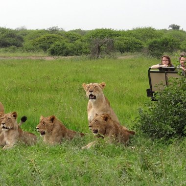Big Game Safari South Africa