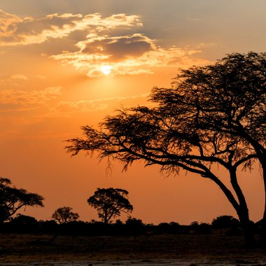 Sunset-in-Hwange