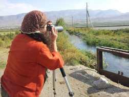 Birding in Armenia