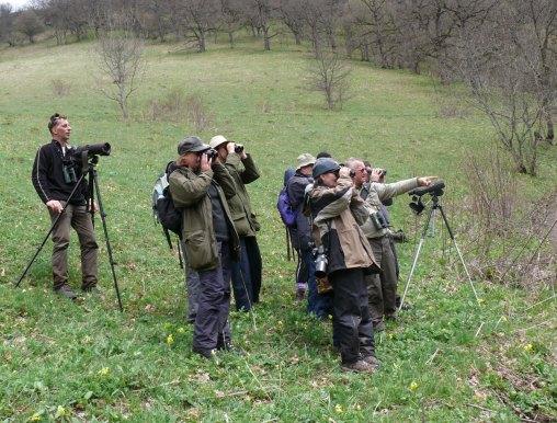 Birdwatchers Armenia