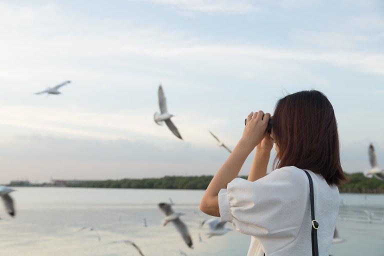 National Bird Day.jpg
