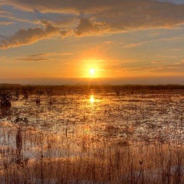 Everglades-National-Park-(2)