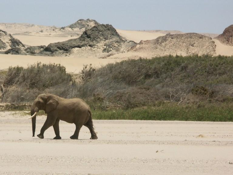 Visit Namibia