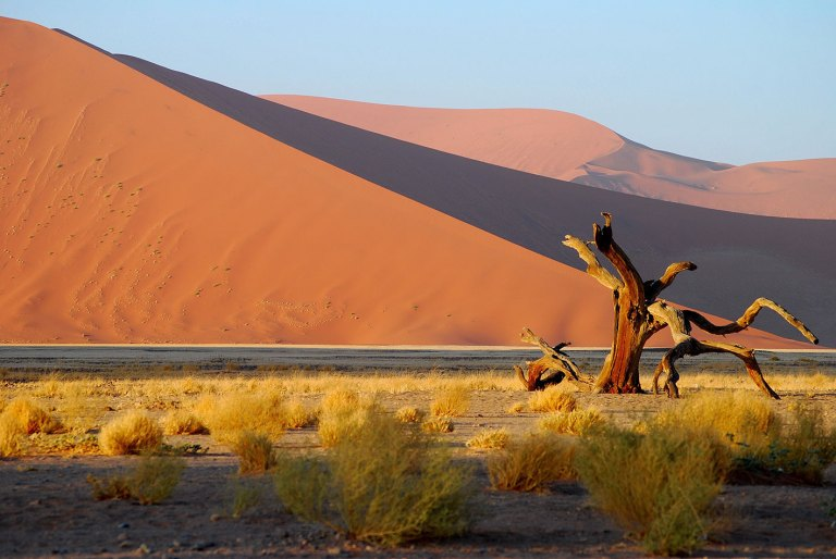 Sossusvlei-in-the-Namib-Desert-(3)