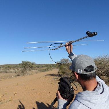 Conservation Safari Namibia