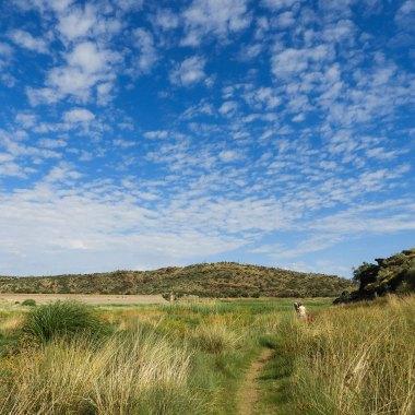 Avis-Dam,-Windhoek