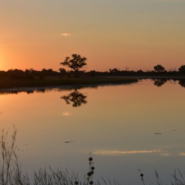 Caprivi-Strip-sunset