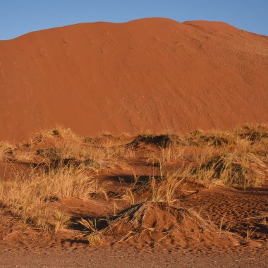 southern-namibia