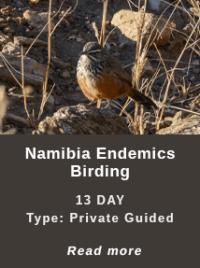 Namibia-Endemics