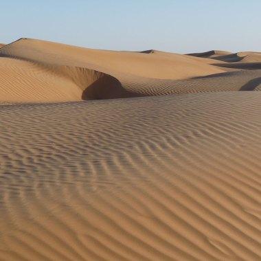 Dunes-of-the-Namib-(1)