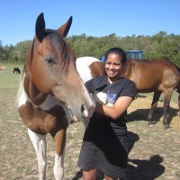 Proud Spirit Horse Sanctuary: Haven For Unwanted Animals