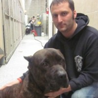Brooklyn's Sean Casey Animal Rescue Helps All Unwanted Animals, Including the Most Difficult Dogs