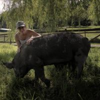 12 Things Allison Argo Learned from Filming THE LAST PIG