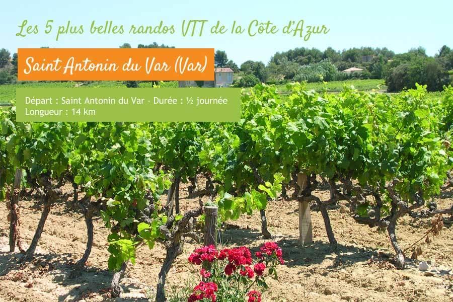 Rando VTT dans les vignes à Saint Antonin du Var