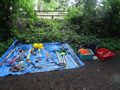 Kingihts Hill Wood - Capital Clean Up day-1
