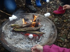 granton-primary-free-nature-school-forest-school-lambeth-25